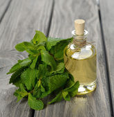 Peppermint essential oil — Stock Photo