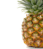 Pineapple — Foto de Stock