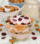 Dessert of yogurt and granola — Stock Photo