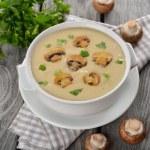 Mushroom soup — Stock Photo #40775693