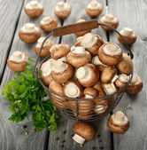 Mushrooms in a basket — Stock Photo