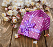 Purple box and branches — Stock Photo