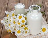 Milk, yogurt and chamomile — Stock Photo