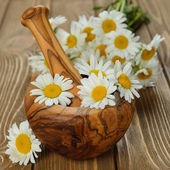 Wooden mortar and daisies — Foto Stock