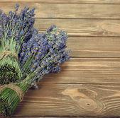 Lavendel — Stockfoto