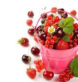Various berries in a bucket — Stock Photo