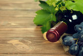 Bottle of wine and grapes — Stock Photo