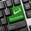 Conceptual keyboard - Encyclopedia (green key) — Stock Photo