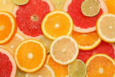 Citrus mix. Background — Stock Photo