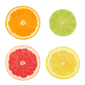 Cross sections of different citrus fruits (isolated) — Stock Photo