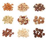 Pilas de colección de frutos secos — Foto de Stock