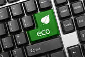 Conceptual keyboard - Eco (green key with leaf icon) — Foto Stock