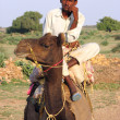Man on camel — Stock Photo