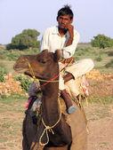 Man op een kameel — Stockfoto