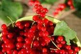 Fresh red currant in bowl on wooden background. — Stock Photo