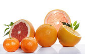 Set of citrus fruit on white background  — Stock Photo