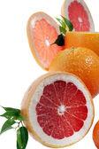 Set of citrus fruit on white background — Stock Photo