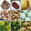 Pictures of various fruits — Stock Photo