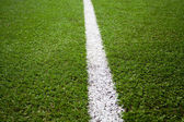 Grass turf on a sports field — Stock Photo