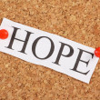 HOPE — Stock Photo #25258333