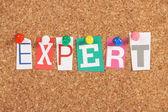 Expert — Stock Photo
