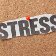 The word Stress — Stock Photo