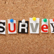 The word Survey — Stock Photo