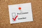 Follower or Leader? — Stock Photo