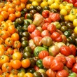 Display of Tomatoes — Stock Photo