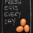 Fresh Eggs Every Day — Stock Photo