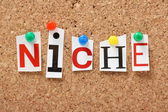 The word Niche — Stock Photo