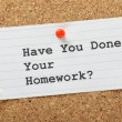 Have You Done Your Homework? — Stockfoto