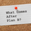 Постер, плакат: What Comes After Plan B