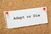 Adapt or Die — Stock Photo