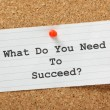What Do You Need to Succeed? — Stockfoto