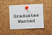 Graduates Wanted — Foto Stock
