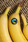 Fairtrade Bananas — Stock Photo