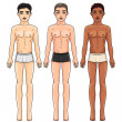 Three men from different ethnic groups in underwear — Stock Vector