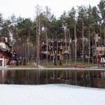 Sad beautiful winter landscape on the lake — Stock Photo