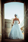Bride view from a back — Stock Photo