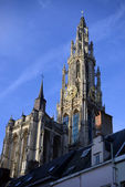 Antwerpse kathedraal — Stockfoto