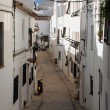 Stock Photo: Altea
