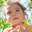 Small boy in the park — Stock Photo