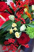 Blomma detalj — Stockfoto