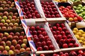 Apple varieties — Stock Photo