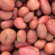 red potato — Stock Photo