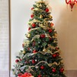 Christmas tree — Stock Photo #31171911