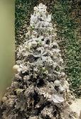 White Christmas tree — Stockfoto