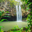 Tropical Waterfall - Stock fotografie
