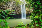 Tropical Waterfall — Stock Photo